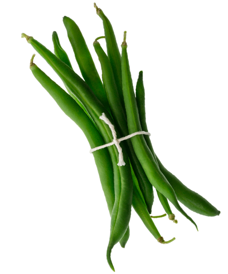 001_Mambo_Product-Images_Green-Beans-tilted-1000x1000-WEB-copy