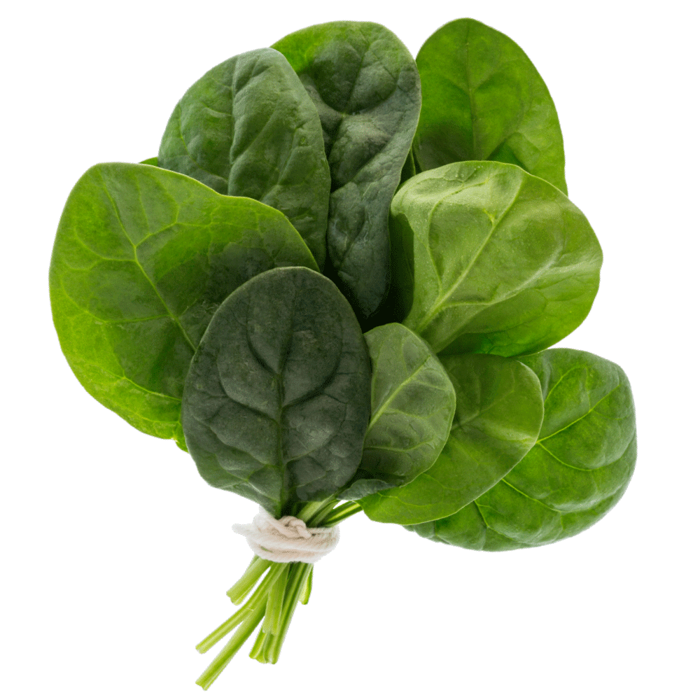 001_Mambo_Product-Images_Spinach-tilted-1000x1000-WEB-copy