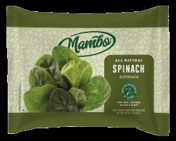 Mambo_Mockups_Spinach_WEB